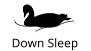 Logo Down-Sleep
