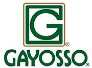 Logo Gayosso